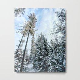 White Gold Winter Metal Print