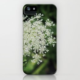 Queen Anne's Lace Wild Carrot Wildflowers Meadow Nature Photography iPhone Case