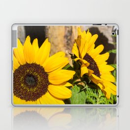 Giant Yellow Sunflower Laptop & iPad Skin
