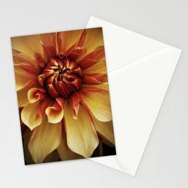 Apricot Orange Dahlia Stationery Cards