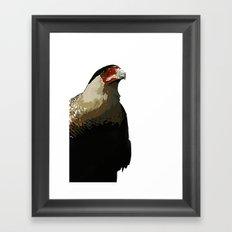 Guadalupe Caracara Framed Art Print
