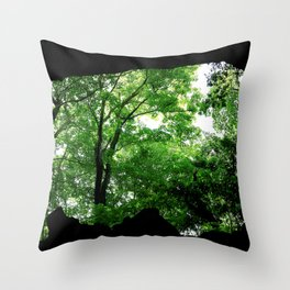 Travel Photography : Los Tres Ojos Forest - Dominican Republic Throw Pillow