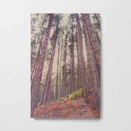 Forest of your Dreams Metal Print