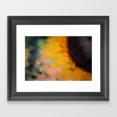 Sunflower I (mini series) Framed Art Print