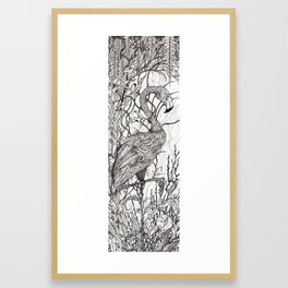 Rare Bird Framed Art Print