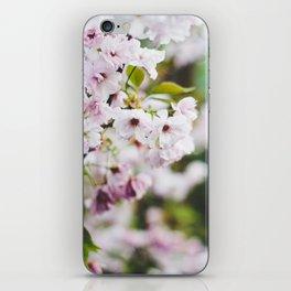 Springtime Blossom iPhone Skin