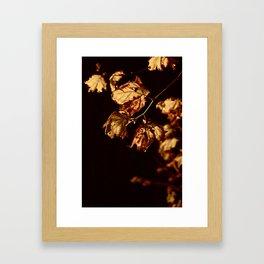 Midnight Leaves Framed Art Print