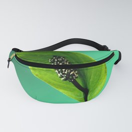 The Green Hoodie, Re-done Fanny Pack