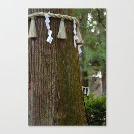 Sacred Trees Canvas Print