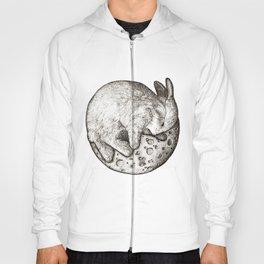 Rabbit On The Moon Hoody