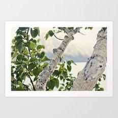 Under the Green Tree Art Print