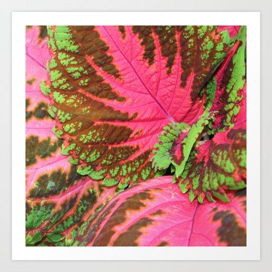 Pink & Lime Leaves Art Print