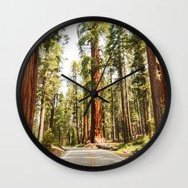 sequoia tree Wall Clock