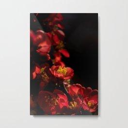 Radiating Red Flower Metal Print