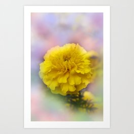the beauty of a summerday -143- Art Print
