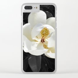 Steel Magnolias - Sweet scented white Magnolia flower Clear iPhone Case