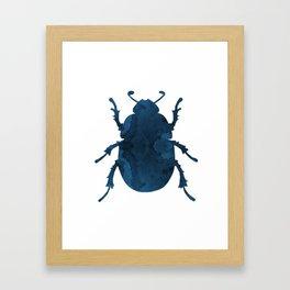 Beetle Scarabaeus Framed Art Print