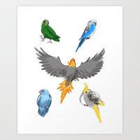 Parrots Art Print