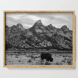 Bison and the Tetons Serving Tray