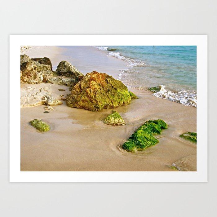 Natural Ocean Tidal Rocks Art Print