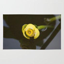 Everglades Flower Rug