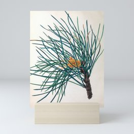 "The Stone Pine, from ""The Spirit of the Woods,"" 1849 (benefiting the Arbor Day Foundation) Mini Art Print"