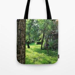 Brasov II Tote Bag