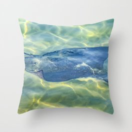 Stingray at Pacific Ocean, Galapagos - Ecuador Throw Pillow
