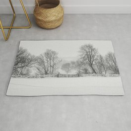 A beautiful photograph of a cold winter's day. Rug