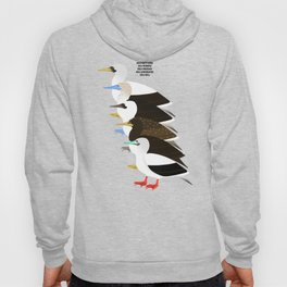 Booby Birds Hoody
