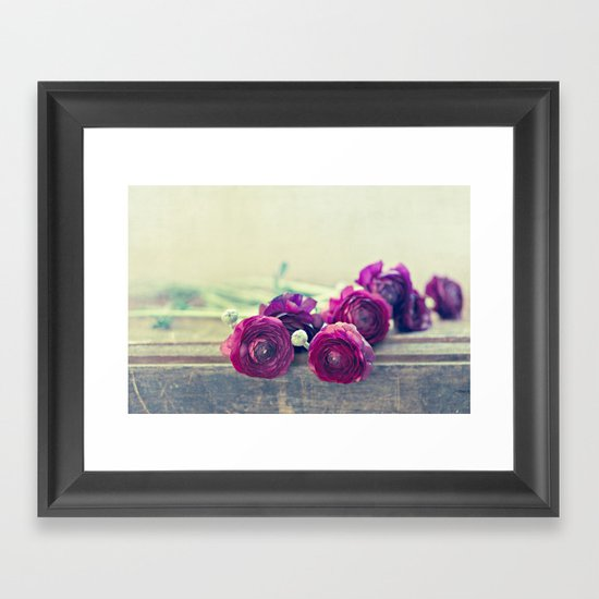 Like Royalty (Purple Ranunculus)  Framed Art Print