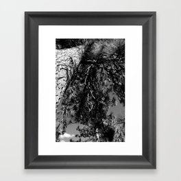 Up The Tree Framed Art Print
