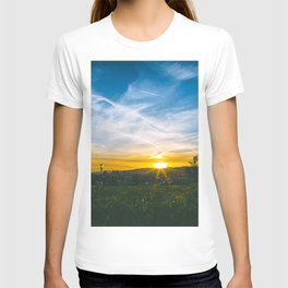 Picnic at the Park T-shirt