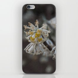 Floral Print 099 iPhone Skin