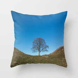 Sycamore Tree in Hadrian's Wall Throw Pillow