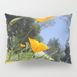 Take The Scenic Route Pillow Sham