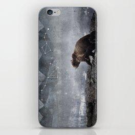 Ursa Major iPhone Skin