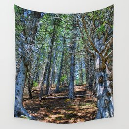 Trail in the forest Wall Tapestry