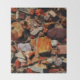 Petrified Wood of the Desert Throw Blanket