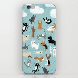 Raining Cats & Dogs iPhone Skin