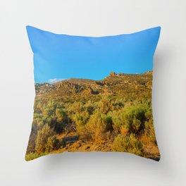Carson City Nevada Landscape Throw Pillow