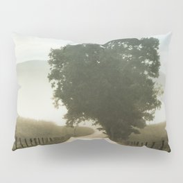 Tree of Life in Cades Cove, TN by Alli Gunter Photography  Pillow Sham