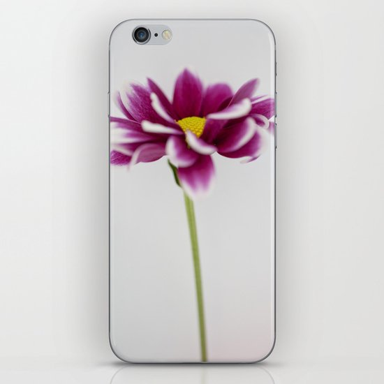 Chrysanth iPhone & iPod Skin