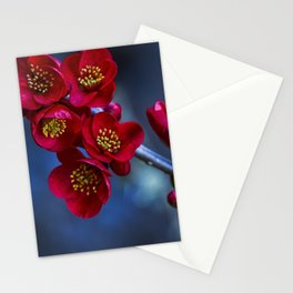 Red Flowering Quince Stationery Cards
