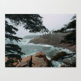 Foggy Morning in Acadia National Park Canvas Print