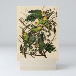 Vintage Parrot Illustration Mini Art Print