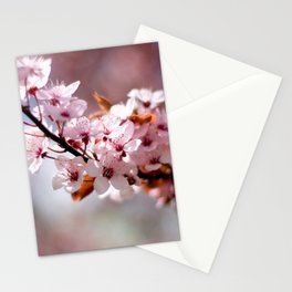 Cherryblossom Stationery Cards