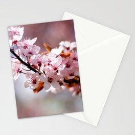 Cherryblossom Stationery Cards