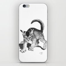 Furious kitten SKnb88 iPhone & iPod Skin