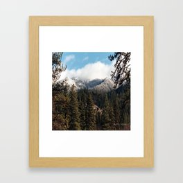 Yolla Bollies in the winter..... Framed Art Print